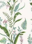 Into The Woods Cembra Fuschia Wallpaper 98542 By Holden